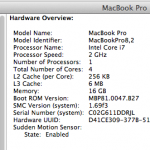 system-report-macbookpro-16gb